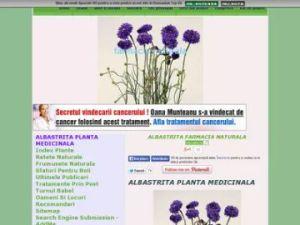 cornflower herb- centaurea cyanus