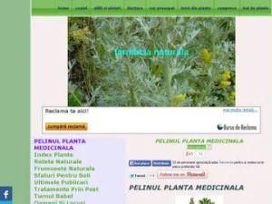 pelinul planta medicinala