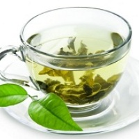 Ghimpele(Holera) Planta Medicinala-Spiny Cocklebur Herb