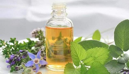 tinctura din plante medicinale
