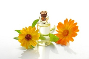 Retete Speciale din Plante Medicinale