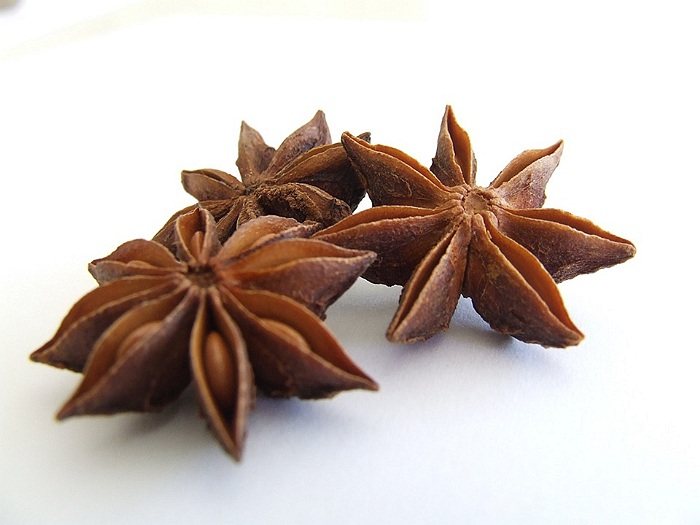 anason planta medicinala-anise herb