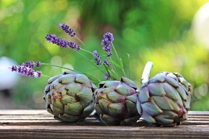 Artichoke Herb